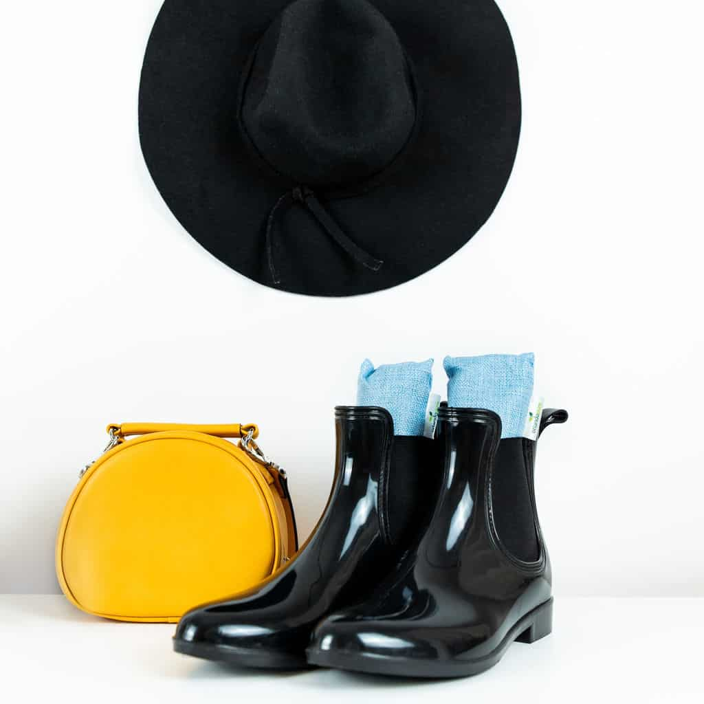 Styled product shot of bamboo charcoal bags in shoes with decorative hat and handbag